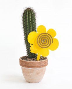 portazampirone girasoloe giallo