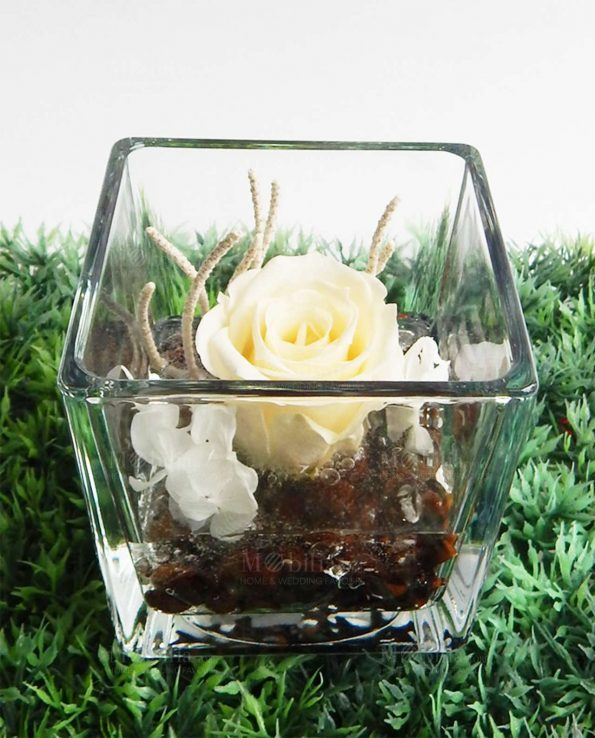 Bomboniere Cubo Vetro Con Rose Vere Stabilizzate