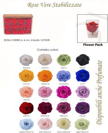 Rose Stabilizzate Piccole Vari Colori