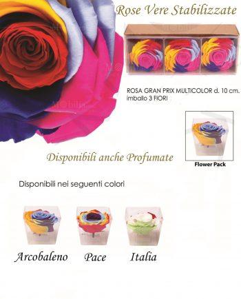 Rose Stabilizzate Multicolor