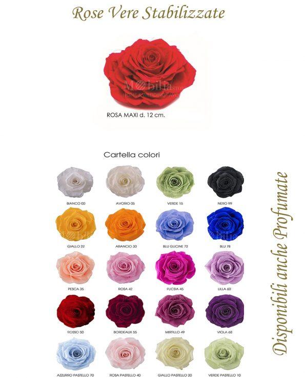 Rose Maxi 12 cm Stabilizzate Vari Colori