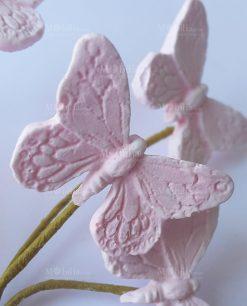 dettaglio farfalla rosa