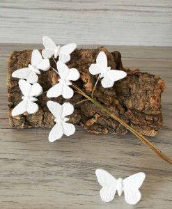 farfalle bianche con gesso