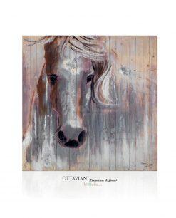 Quadro Cavallo Bianco su Legno Ottaviani