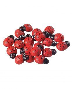coccinella legno rossa