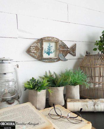 Specchi da parete moderni legno vari colori brandani for Mobilia giardini naxos