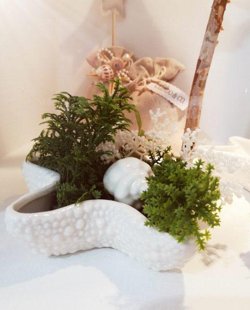 stella marina ceramica bianca foto ambientata