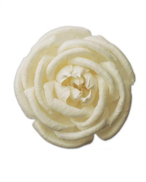 rosa bianca 11 cm