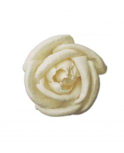 rosa bianca 7 cm
