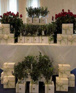 bomboniere boho chic per matrimonio bonsai personalizzati paola rolando