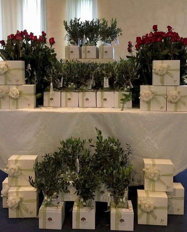 bomboniera-bonsai-personalizzati-paola-rolando
