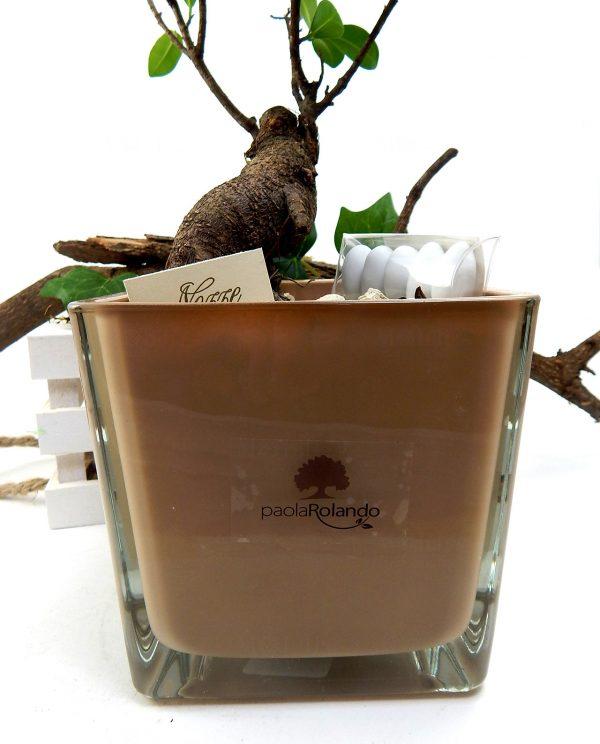 bomboniera-bonsai-con-vaso-vetro-nocciola-paola-rolando