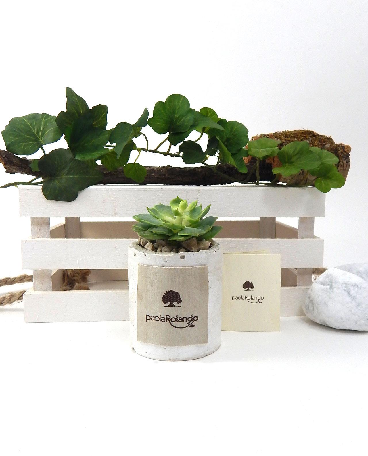 Bomboniera piantina grassa vaso bianco Paola Rolando - Mobilia Store Home & Favours