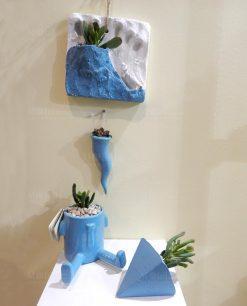 piante grasse succulenti con vaso color acqua paola rolando patatino triangolino cornetto e vulcanetto
