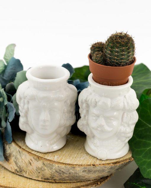 portapiante testa di moro ceramica caltagirone bianca con pianta grassa