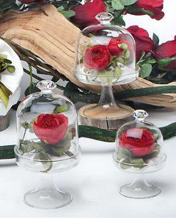 alzatine in vetro con pomellino diamante