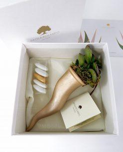 bomboniera cornetto oro bianco con pianta grassa succulenta paola rolando con confetti e scatola