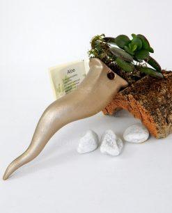 dettaglio cornetto oro da appendere con pianta grassa paola rolando