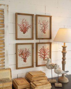 stampe con coralli