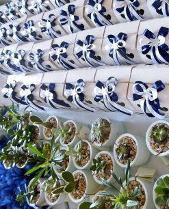 confezione bomboniera pianta grassa