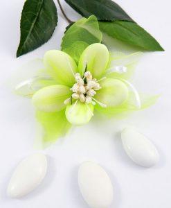 confetti di sulmona nuvoletta verde per bomboniere