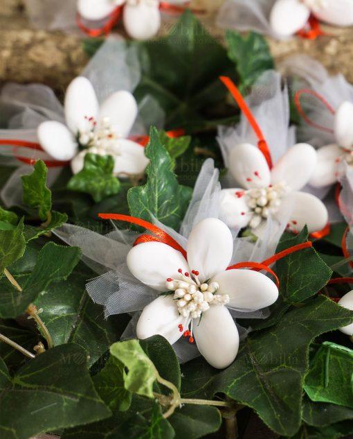 fiori di sulmona bianchi con decori rossi