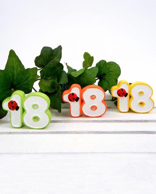 magnete 18 anni colorati per bomboniere fai da te