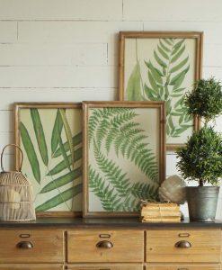 stampe foglie con cornice legno naturale