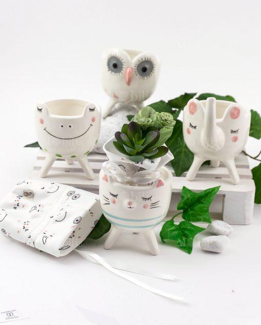 portapiantine animaletti porcellana con bustina portaconfetti e piantina grassa linea nature ad emozioni