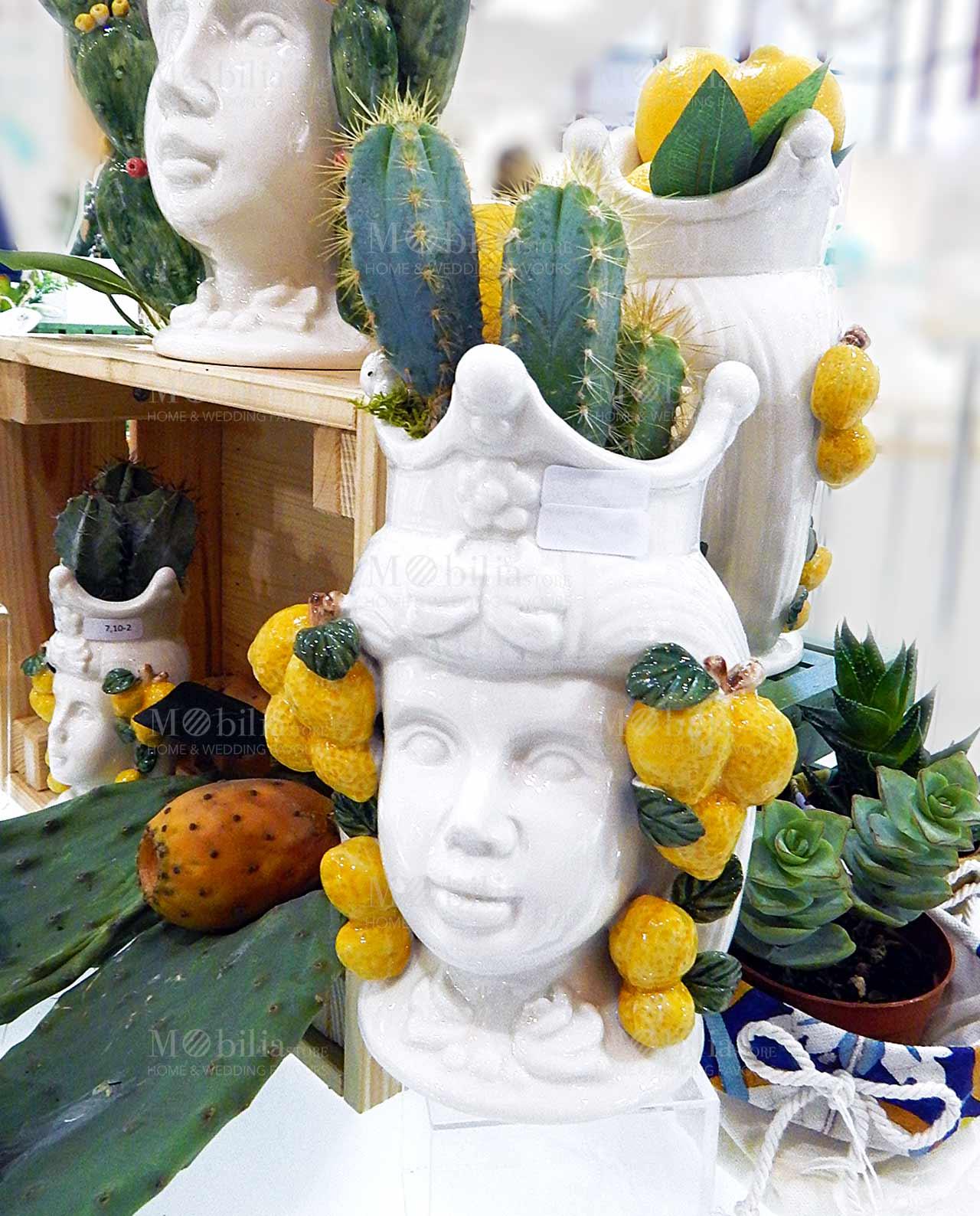 testa di moro linea i mori con pianta cactus ad emozioni