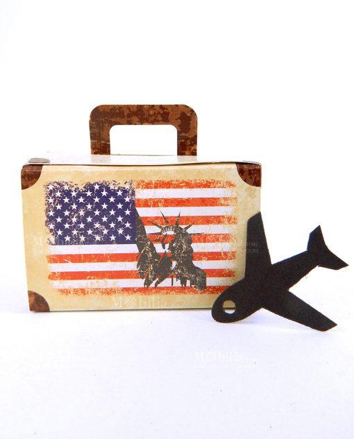 valigia cartoncino marrone e con bandiera americana e aereo