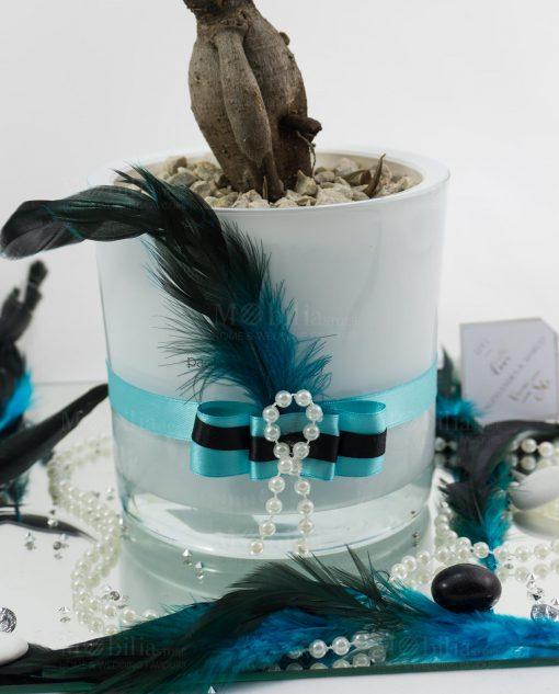 bomboniera anni 20 bonsai ginseng con vaso vetro bianco nastro azzurro e nero e piuma paola rolando