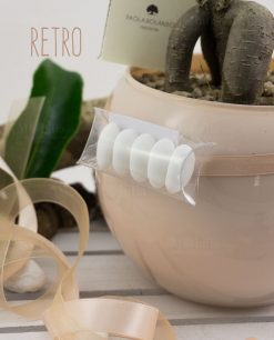 bomboniera bonsai vaso vetro sfera skin paola rolando con tubicino