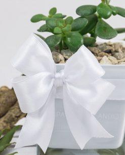 bomboniera pianta grassa con vasetto vetro paola rolando doppi fiocchi bianchi e confetti
