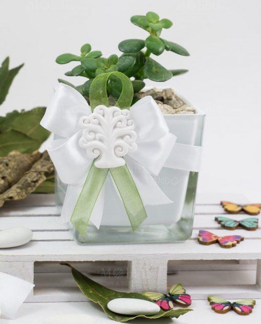 bomboniera vasetta vetro con pianta grassa succulenta paola rolando con fiocco e gesso albero della vita