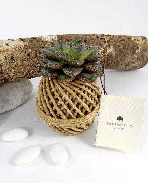 pianta grassa succulente con gomitolo paola rolando