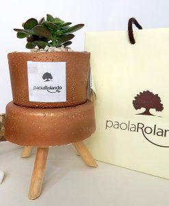 pianta verde con trespolino h 15 cm e vaso bronzo paola rolando con bag
