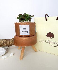pianta verde con trespolino vaso bronzo h 10 cm paola rolando con bag