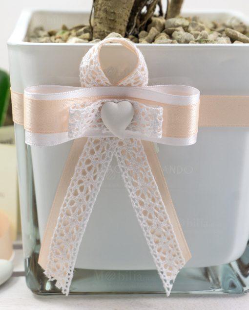bomboniera bonsai con vaso vetro paola rolando con nastro pesca e cuore gesso