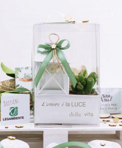 bomboniera lanterna bianca con pianta sacchetto portaconfetti scatola e fiocco verde