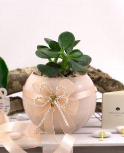 bomboniera pianta grassa con vaso sfera skin paola rolando con doppio fiocco e ciondolo chiave color oro