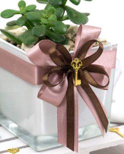 bomboniera pianta grassa con vaso vetro bianco paola olando con nastro rosa antico e ciondolo chiave