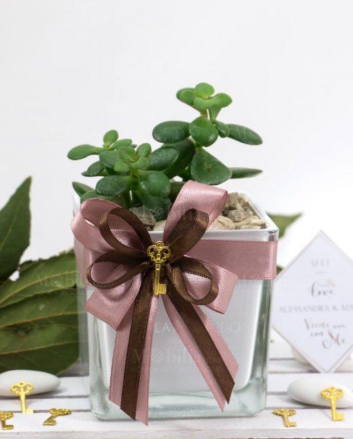 bomboniera pianta grassa vaso cubo paola rolando nastro rosa antico e chiave
