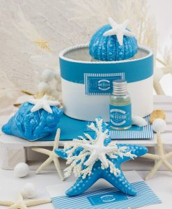 bomboniera profumatore porcellana blu riccio stella marina e conchiglia rdm design linea oceania