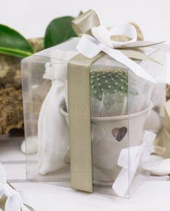 bomboniera secchiello metallo tortora con piantina grassa scatola trasparente e sacchetto portaconfetti