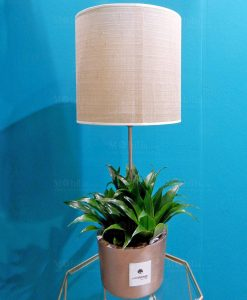 lampada con vaso cemento e pianta verde paola roland