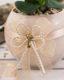 pianta grassa con vaso vetro sfera paola rolando con doppi fiocchi e ciondolo chiave