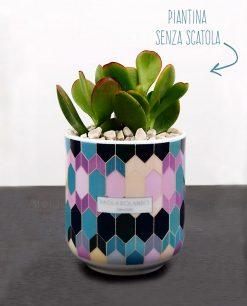 pianta grassa succulenta con vaso mug decoro maiolico paola rolando