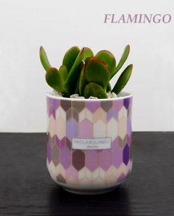 vasetto mug con pianta grassa succulenta decoro flamingo linea 102 paola rolando