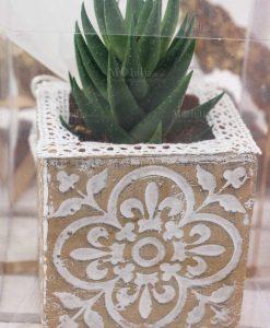vaso intarsiato cemento con pianta grassa